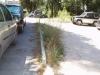 via Urbino 1