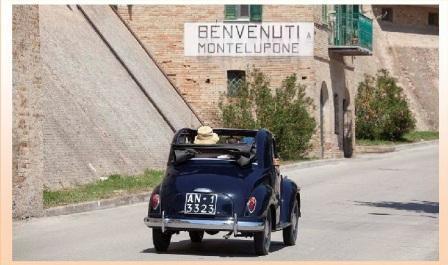 4_montelupone_3