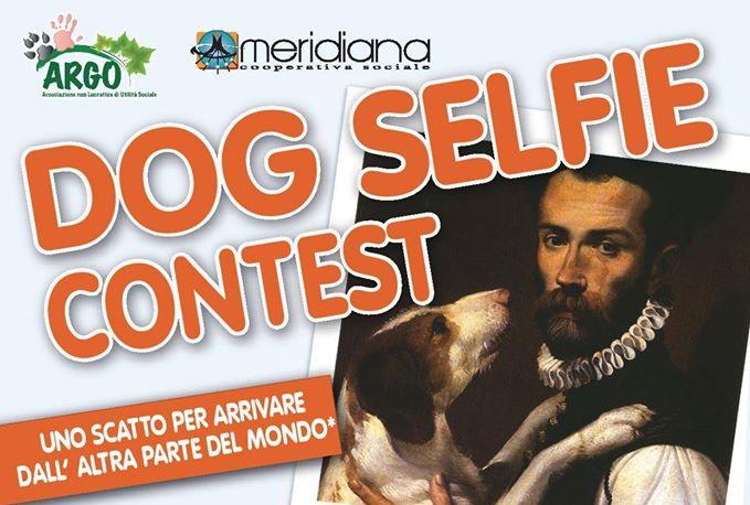 Dog selfie contest 1