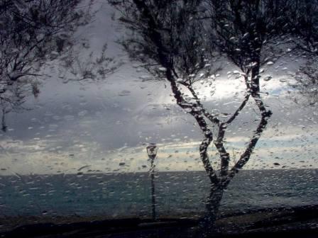 Pioggia serale