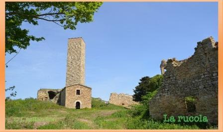 castello di pitino ph f.pallocchini