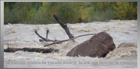 fiume in piena con tronchi