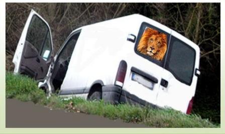 leone nel furgone