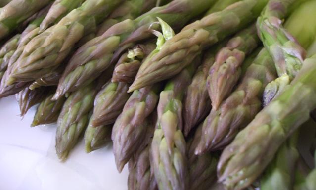 p-16-asparagi