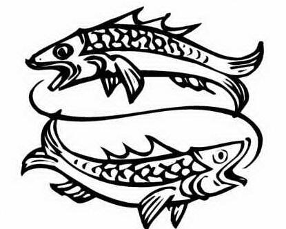 p 23 pesci