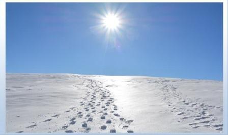 passi sul manto di neve