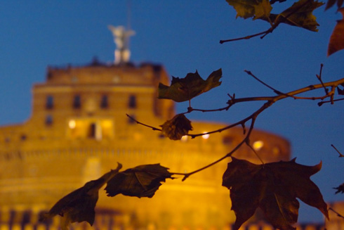 riflessi d'autunno