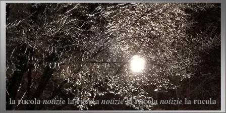vento di notte da pexels.com particolare